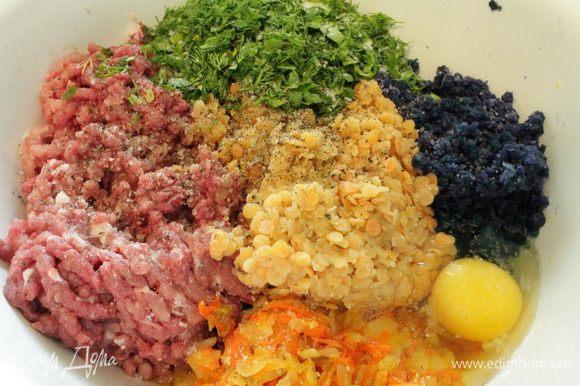 Мясо и капусту пропустить через мясорубку, добавить отваренную чечевицу, обжаренные лук и морковь, одно яйцо, зелень петрушки и укропа, посолить и поперчить по вкусу.