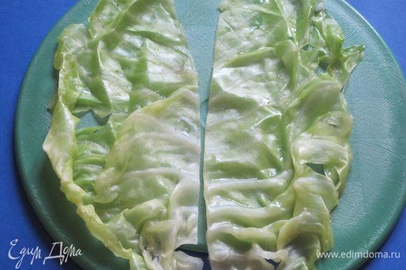 Вынуть листья, остудить. Ножом вырезать утолщение посередине листа, разрезать каждый лист на 2 части.