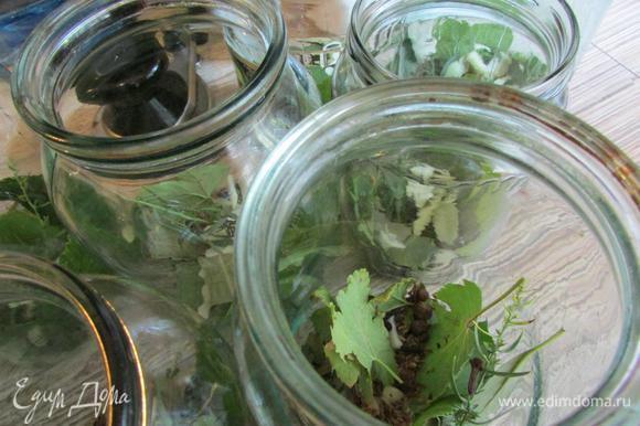 Тем временем на дно стерилизованных банок уложить специи (на ваш вкус, у меня - черный перец горошком, гвоздика, душистый перец, семена укропа), смородиновые и вишневые листья, лавровый лист, чеснок.