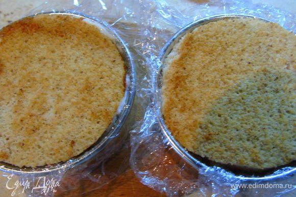 Закрываем вторым кругом бисквита, прижимаем поплотней и отправляем в холодильник на ночь.