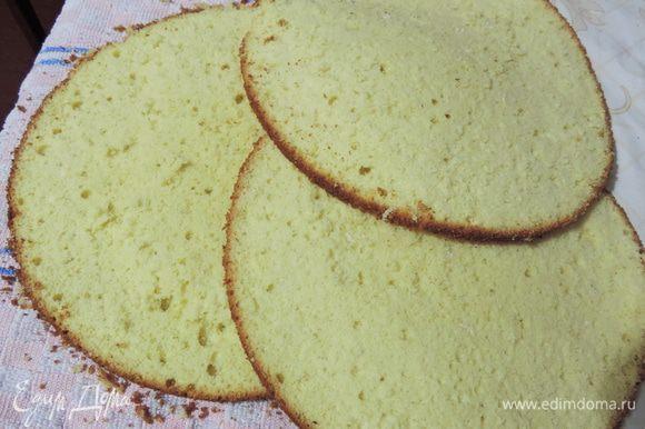 Даем бисквиту остыть и разрезаем на три пласта.