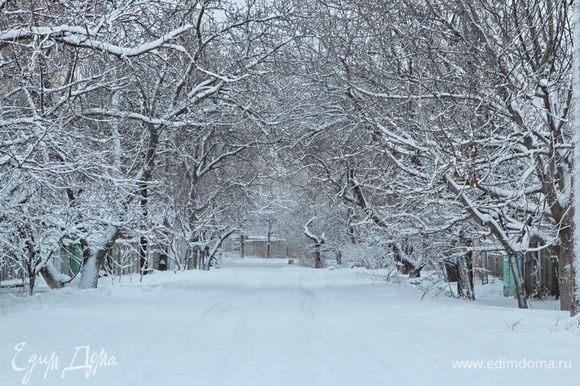 Ну, и немножко вам нашей зимы!