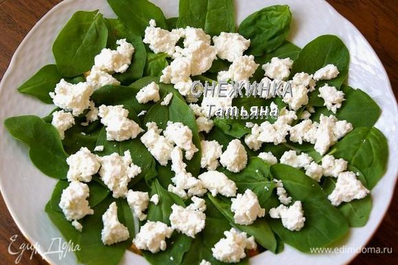 На блюдо выкладываем шпинат. Сыр разделываем на кусочки и раскладываем на зелень.