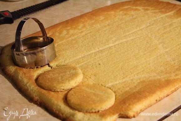 Вырежем бисквиты нужного диаметра для основы десерта.
