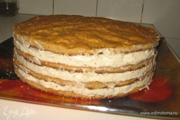 Собираем торт, намазывая кремом коржи, все, корме верхнего. У меня, как видите, четыре коржа, и крема довольно много (он хорошо впитывается в коржи, за счет этого они еще больше утолщаются). Поэтому я для крема взяла почти 2 стакана сметаны.