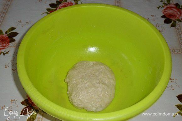 Замешиваем тесто. Накрываем чашку полотенцем и оставляем на 1 час в теплом месте.