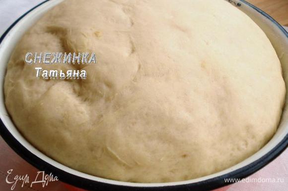 Теперь можно приступать к лепке пирожков. Вот так поднялось тесто.