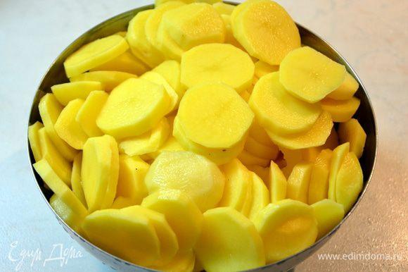 Картофель нарезать кружочками.