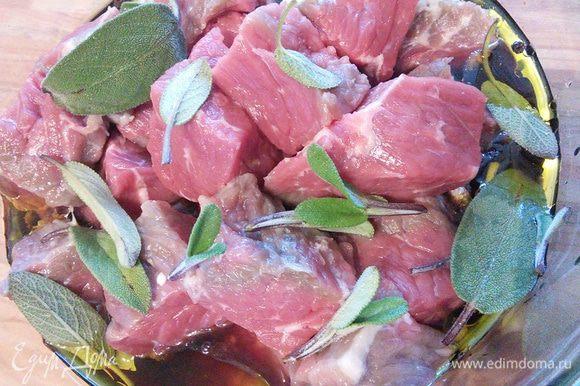 Выложить в маринад мясо, порезанное довольно крупными кусочками. Мариноваться мясо может сутки или двое в холодильнике. Я добавила листики шалфея.