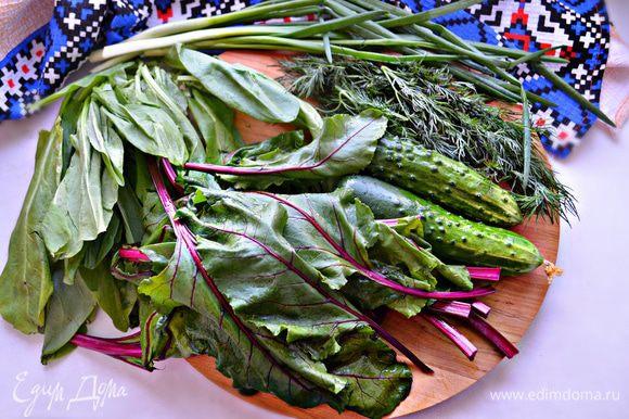 Овощи и зелень нужно хорошо промыть, обсушить.
