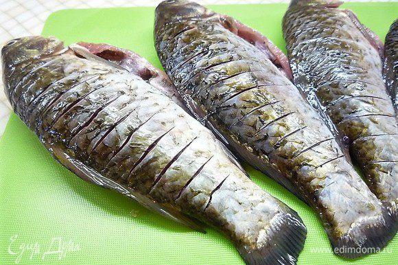 Карасей надрезаем с обеих сторон, натираем маринадом внутри и снаружи, оставшимся маринадом заливаем рыбу и оставляем на 20 минут.