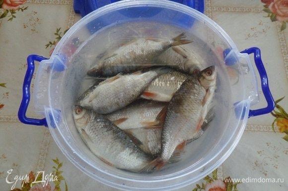 Сливаем воду, рыбу промываем водой. Выкладываем в чашку. Заливаем холодной водой и оставляем на 30 минут. Затем сливаем воду, рыбу выкладываем на решетку.