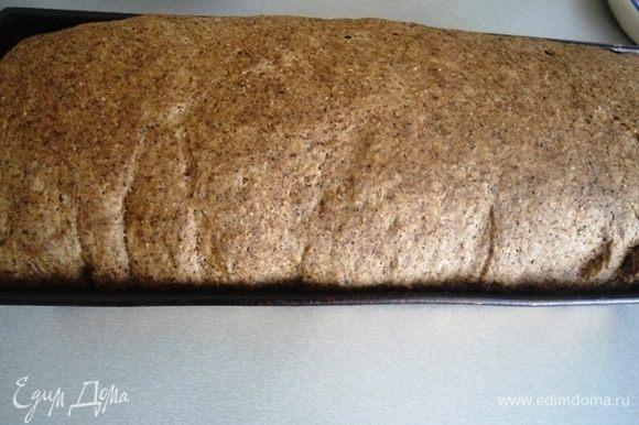 Вот так выглядит буханка на этом этапе, перед тем как будет выпекаться. Если вы хотите настоящий бородинский хлеб, сейчас самое время смазать водой и присыпать зернами кориандра. Выпекать хлеб 30 минут при 190°С, потом убавить до 160°С и печь еще 25 минут.
