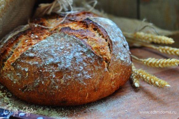Картофель растолочь с маслом. В дежу положить закваску, смешать ее с квасом (начать со 100 мл). Добавить пшеничную муку, дрожжи, солод и соль, перемешать и добавить картофель и тмин. Если тесто сухое и не включает в себя всю муку, то добавить кваса.