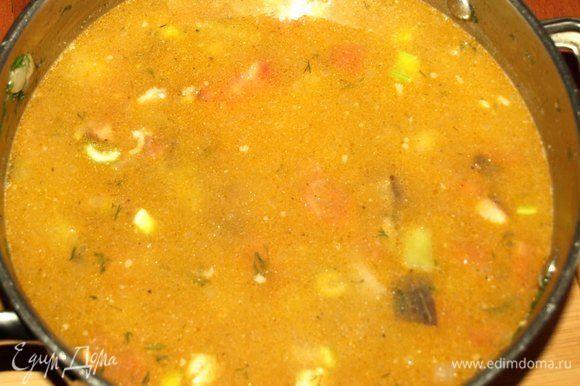 Добавить воды и варить до готовности чечевицы. Примерно 25-30 минут.
