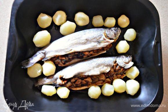 Противень смажьте растительным маслом и уложите форель вместе с картофелем, сверху сбрызните еще немного маслом.