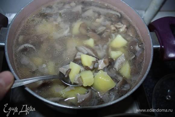 Добавить воду, посолить по вкусу. Далее добавить очищенный и нарезанный картофель. Варить до готовности картофеля.