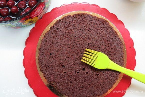 Приступаем к сборке торта. Вишню в коньяке извлечь из контейнера, дать лишней жидкости стечь. Жидкость не выливаем, ей будем пропитывать бисквит. В разъемную форму поместить первый шоколадный корж, пропитать вишнево-коньячной настойкой.