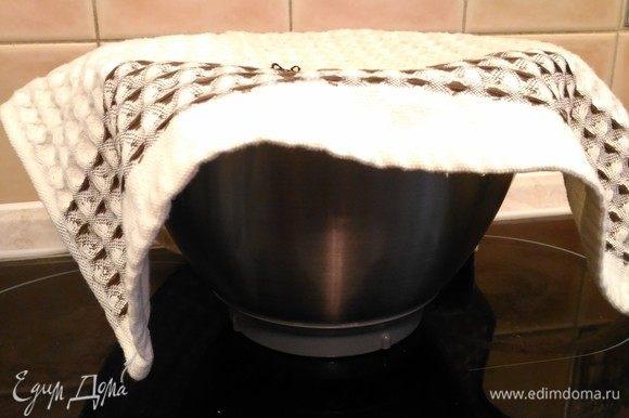 Накрываем тесто кухонным полотенцем и ставим в теплое место, можно в духовку, на 25–30°С, если надо ускорить процесс. Или, как советует Юлия Высоцкая, в кухонный шкаф. Если не собираетесь готовить день в день, кладете тесто в пакет и убираете в холодильник на ночь. Утром достаете — и в теплое место.
