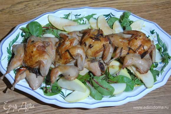 Готовых перепелок выложить на яблочный салат и сразу подавать.