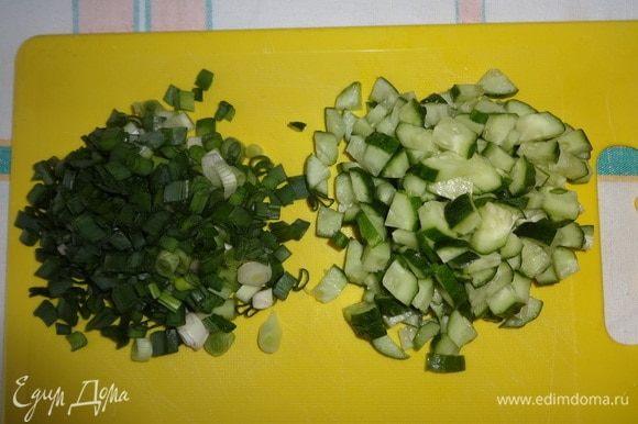 Огурцы нарезать мелкими кубиками. Зеленый лук мелко нарезать.