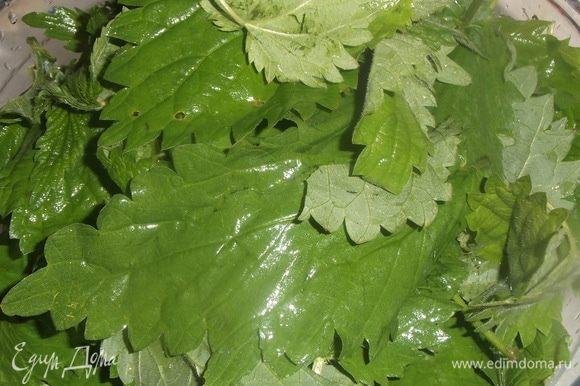 Листья крапивы обдать кипятком или промыть под горячей водой. Порезать.