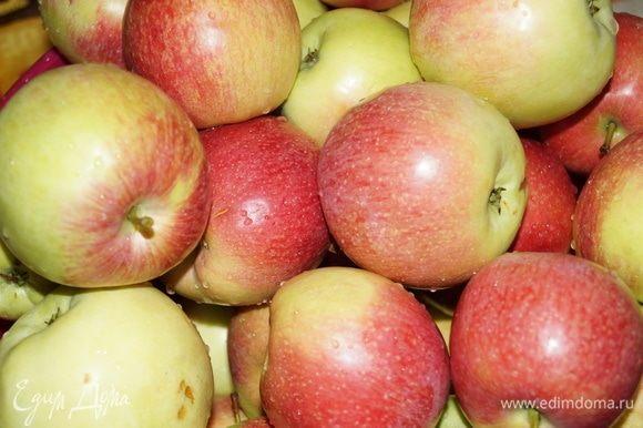 Не первый год я покупаю эти отечественные яблоки. Они твердые на ощупь, но режутся легко. Очень сочные, сладкие и ароматные.