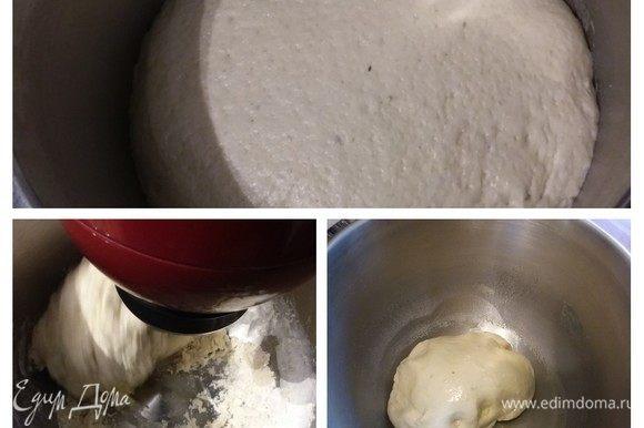 Для теста смешать в теплой воде дрожжи и мед. Оставить на 10 минут для активации. В чашу комбайна просеять муку, добавить чайную ложечку соли, чесночный порошок, оливковое масло. Влить дрожжи в муку и замесить гладкое, мягкое, эластичное тесто. Тесто смазать оливковым маслом. Чашу накрыть пленкой и поставить в теплое место на расстойку на час–полтора.