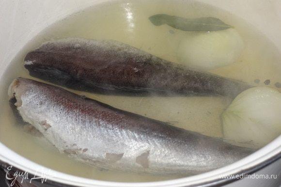 Лук почистить, вымыть, разрезать пополам. Воду вскипятить, положить в кастрюлю с водой рыбу, луковицу, лавровый лист, перец горошком. Довести до кипения, посолить. Огонь убавить и варить в течение 10 минут. Выключить огонь и дать рыбе остыть в бульоне.