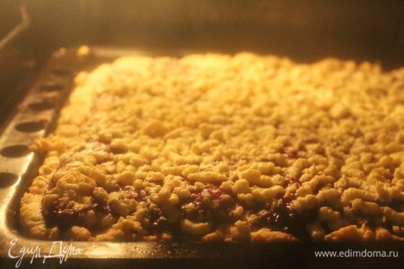 Выпекаем, как пирог, в духовке при температуре 180°C 20–25 минут. Готовый пирог разрезаем на небольшие квадраты (примерно 5х5 см). Печенье подавать с чаем или молоком. Приятного аппетита.