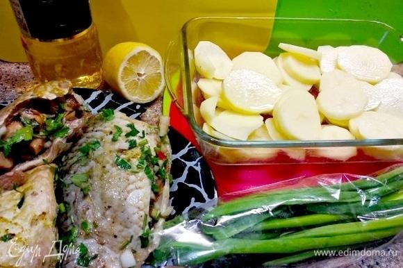 Картошку чистим, моем и нарезаем кольцами, раскладывая в противень, смазанный маслом.