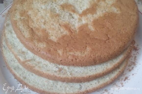 Кокосовый бисквит разрезаем на 3 части, третью тоже вырезаем диаметром 16 см.
