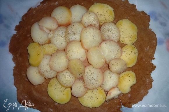 На тесто выложить слой картофеля, не доходя до краев 5–6 см, посолить и поперчить.