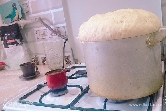 Когда тесто поднимется, вымешиваем слегка на столе, и так 2–3 раза. Начинаете лепить что душе угодно.