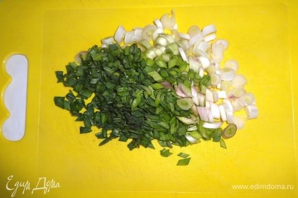 Зеленый лук тонко нарезать наискосок.