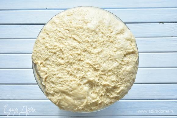 Оставить тесто в теплом месте для подъема. В течение часа тесто дважды обмять с интервалом в 30 минут. Через 1,5 часа тесто готово к формованию выпечки.