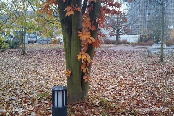 Вот и осень прошла... Ааааааааааа......