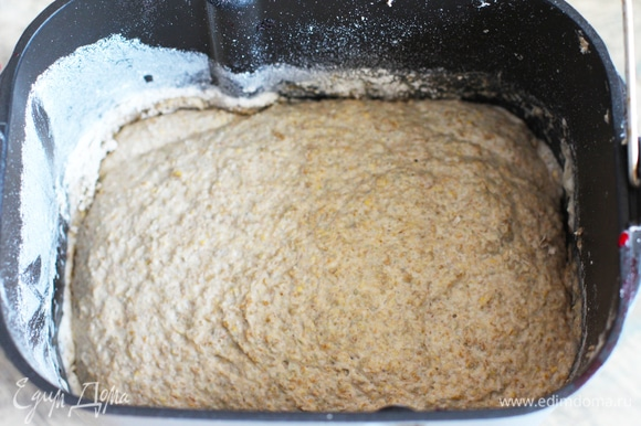 Из опары взять 500 г, остальное добавить к рабочей закваске и отправить на хранение. Все ингредиенты выложить в дежу, включить программу «Ржаной хлеб» (3 ч 30 минут). Если не уверены, что ваша закваска сильная, подстрахуйтесь, добавив щепотку сухих дрожжей в тесто. У меня тесто поднялось хорошо и ровно.