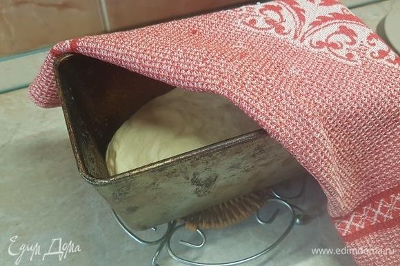 Форму для выпечки смазать маслом. Выложить в нее тесто и оставить для подъема на 30 минут. Выпекать 40 минут при температуре 200°C.