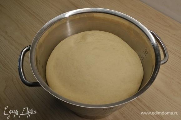 В теплое молоко добавить дрожжи, сахар и 200 г муки. Тщательно размешать и убрать в теплое место на 20 минут. В опару добавить яйцо, растопленное сливочное масло, 300 г муки и соль. Вымесить тесто и убрать на подъем примерно на 40 минут.