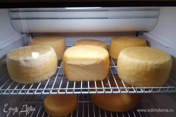 Самое главное — выдержать два месяца созревания, чтобы ощутить весь вкус сыра качотта.