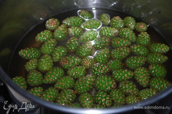 В сироп добавьте шишки (у меня 150 г), варите их на медленном огне около двух часов.