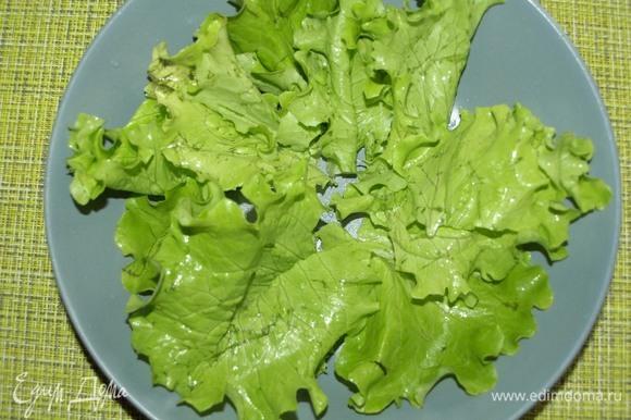 Салат промыть, дать стечь воде. Разложить по тарелке.