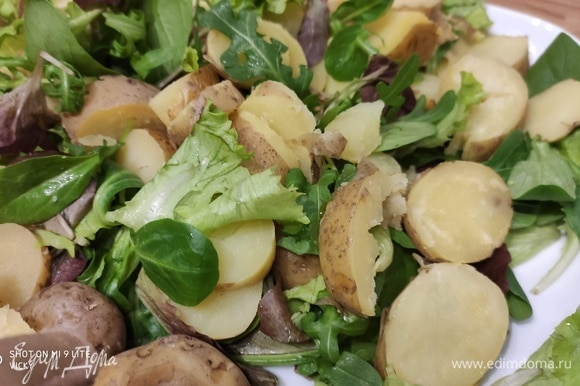 Разложить на тарелке салатный микс. Кстати, этот салат будет таким же вкусным и без салатного микса. Выложить ломтики картофеля.