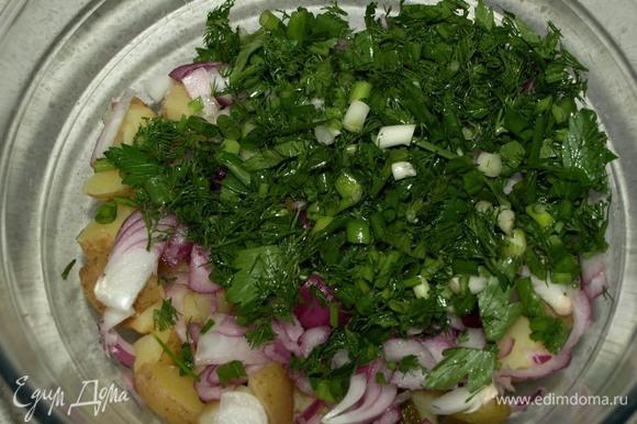 Зелень (зеленый лук, петрушка, укроп) мелко порубить, лук (можно взять любой, у меня ялтинский) нарезать тонкими перьями.