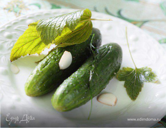 Закуска из малосольных огурцов и сметаны с зеленью