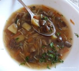 Грибной суп из трех видов грибов
