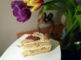 Торт «Зимнее яблоко»