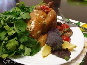Цыплята-корнишоны горячего копчения