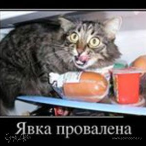 Кот Шкодливый